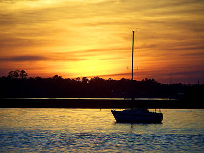 Art Print featuring the photograph Resting In A Mango Sunset by Sandi OReilly