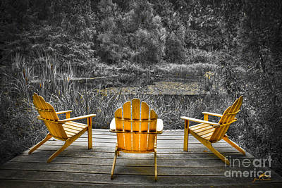 Chair Photograph - Adirondeck Chairs In The Forest Of A Botanical Garden In  Virginia by Jim Swallow