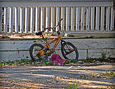 Photograph - Resting by Linda Brown