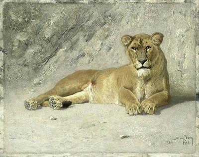 Resting Lioness, Jan Van Essen Art Print