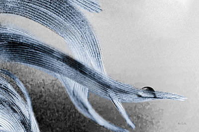 Contemporary Abstract Photograph - Resting On A Feather by Bob Orsillo