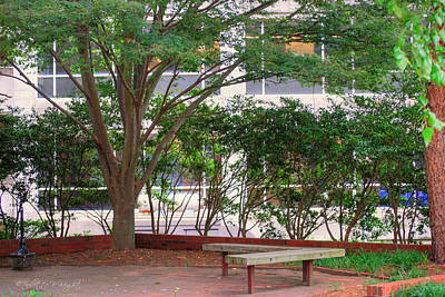 Photograph - Resting Place Benches - Nc State by Paulette B Wright