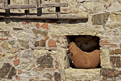 Photograph - Resting Rooster On A Farm Wall by David Letts