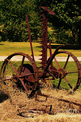Photograph - Retired Farm Equipment by Lesa Fine