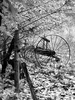 Photograph - Retired Hay Rake by Will Borden