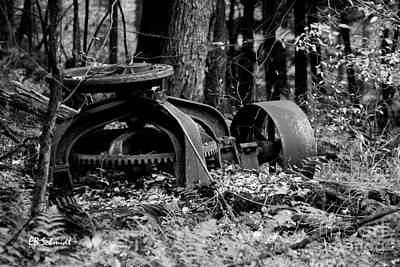 Photograph - Retired Machines 15 - Lost In The Woods by E B Schmidt