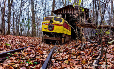 Photograph - Retired Train Ride by Christopher Holmes