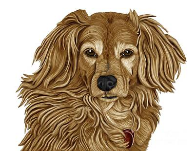 Retriever Digital Art - Retriever Mix by Karen Sheltrown
