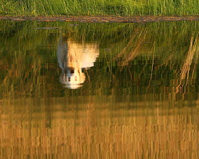 Photograph - Retriever Reflection by Coby Cooper
