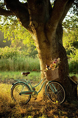 Green Color Photograph - Retro Bicycle With Red Wine In Picnic by Nightanddayimages