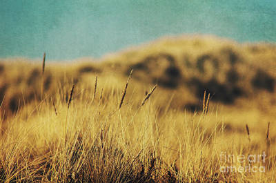 Retro Dunes Art Print by Angela Doelling AD DESIGN Photo and PhotoArt