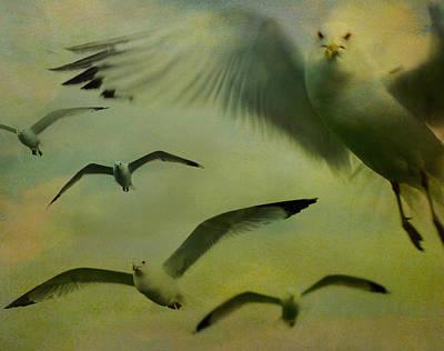 Retro Seagulls Art Print