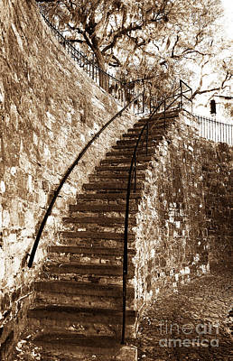 Savannah Fine Art . Savannah Old Trees Photograph - Retro Stairs In Savannah by John Rizzuto