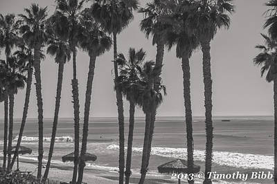 San Clemente Ca Photograph - Retro-surfing by Timothy Bibb