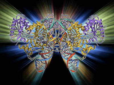 Molecular Structure Photograph - Retroviral Intasome Molecule by Laguna Design