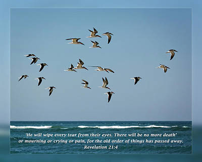 Revelation 21 4 Art Print by Dawn Currie