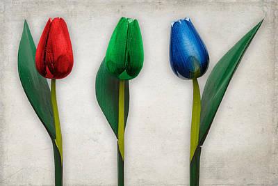 Photograph - RGB by Zoran Buletic