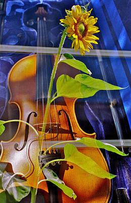 Rhapsody In Yellow Art Print by Farhad VakiliTabar