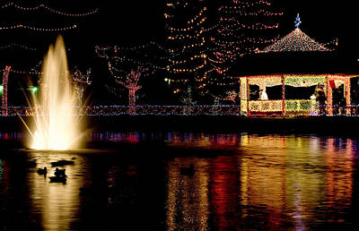 Photograph - Rhema Christmas Lights - Duck Pond by Gregory Ballos