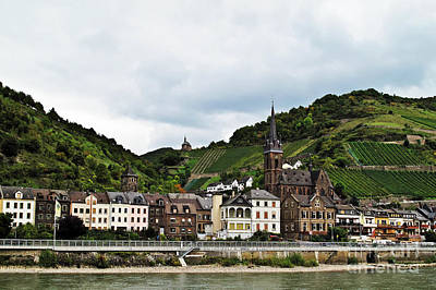 Photograph - Rhine River View by Elvis Vaughn
