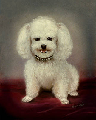 Cutest Poodle Art Print by Evie Cook