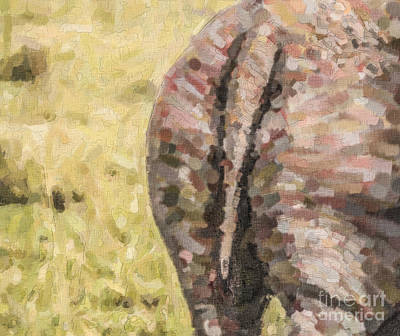 Rhinoceros Digital Art - Rhino Rear by Liz Leyden
