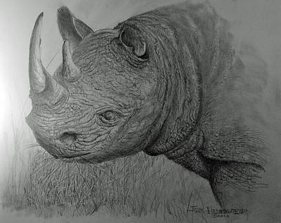 Drawing - Rhinoceras by Jim Hubbard