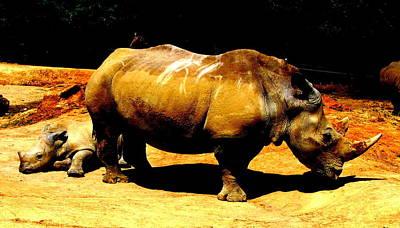 Photograph - Rhinos by Guy Pettingell