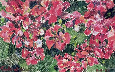 Rhododendron Art Print by Izabella Godlewska de Aranda