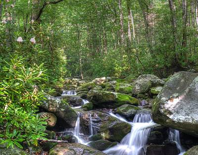 Photograph - Rhododendron Stream by Mark Bowmer