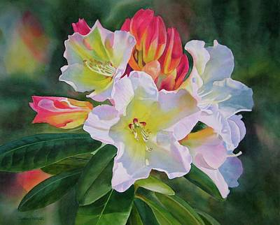 Red Bud Painting - Rhododendron With Red Buds by Sharon Freeman