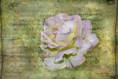 Photograph - Rhythm Of Love by Judy Hall-Folde