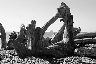 Photograph - Rialto Beach Cake Rock Driftwood by Paul Rebmann
