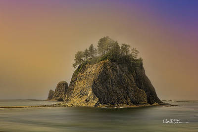 Rialto Beach - Little James Island Art Print