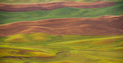 Photograph - Ribbons On The Earth by Kunal Mehra