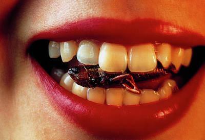 Rice Field Grasshopper Between Woman's Teeth Art Print