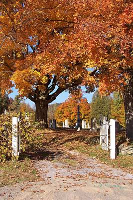 Photograph - Rice Hill Cemetery by R B Harper