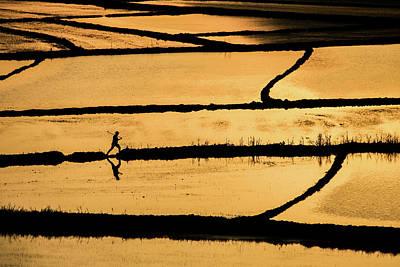 Rice Wall Art - Photograph - Rice by ?mm? Nisan
