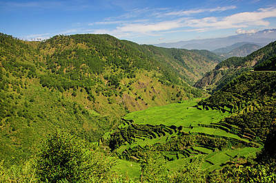 Filipino Photograph - Rice Terraces From Bontoc To Banaue by Michael Runkel