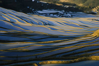 Chinese Peasant Painting - Rice Terraces Of Yuanyang 1 by Lanjee Chee