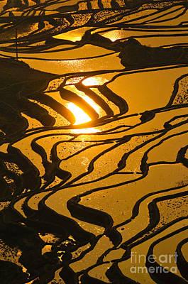 Terracing Photograph - Rice Terraces Of Yuanyang by Konstantin Kalishko
