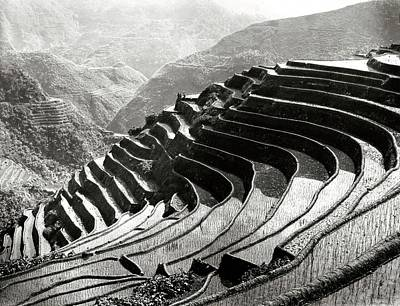 Igorot Photograph - Rice Terracing In The Philippines by American Philosophical Society