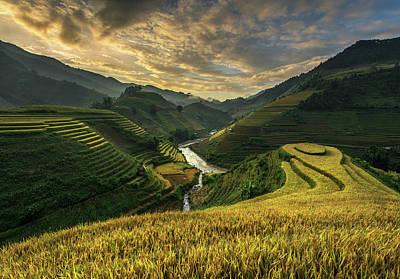 Rice Wall Art - Photograph - Riceterrace ( Vietnam) by Sarawut Intarob