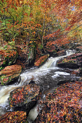 Landscape Photograph - Ricketts Glen Cascading Falls by Marcia Colelli