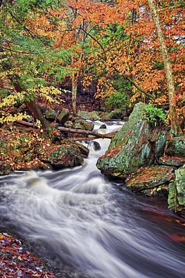 Popular Photograph - Ricketts Glen Falls by Marcia Colelli