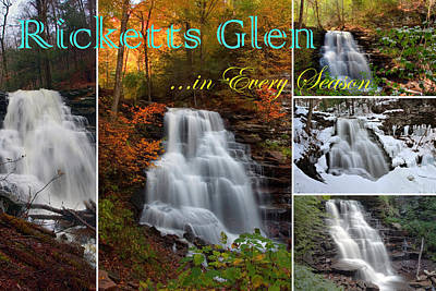 Photograph - Ricketts Glen In Every Season by Gene Walls