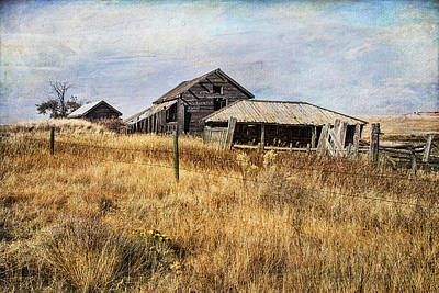 Photograph - Rickety Barn And Woodshed by Theresa Tahara