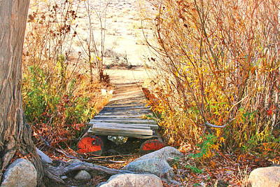 Photograph - Rickety Bridge by Marilyn Diaz