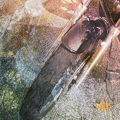 Digital Art - Ride Collage by Linda Carruth