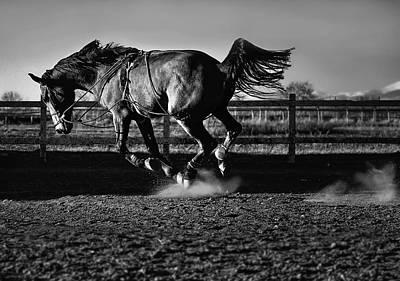 Bulgaria Photograph - Ride The Lightning by Veselin Malinov